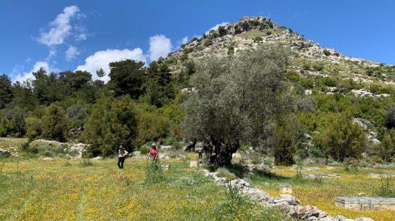 Likya Yolu Karmylassos'tan Patara'ya