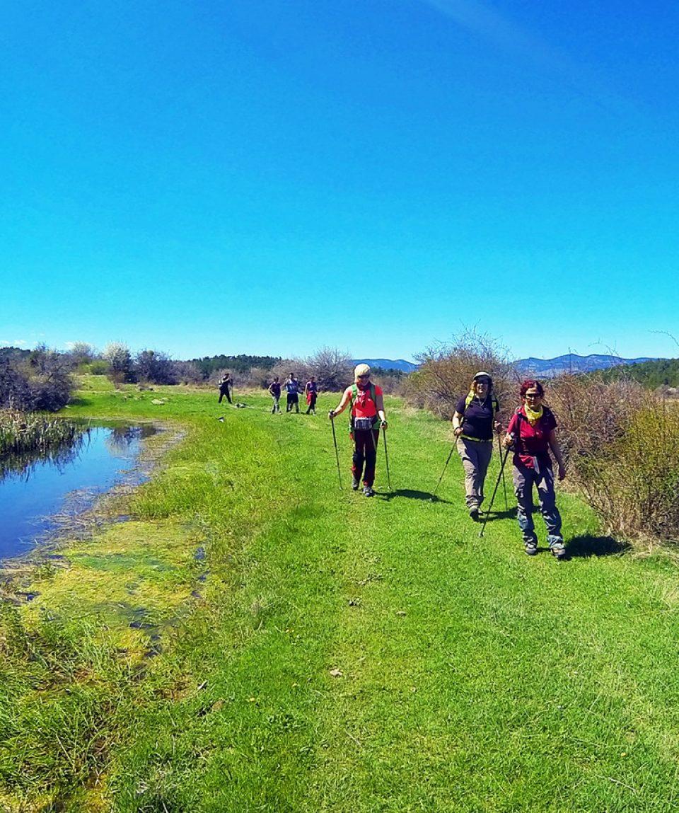 Günübirlik Doğa Yürüyüşleri